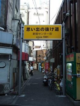 12歌舞伎町の地形2(新宿センター街).jpg